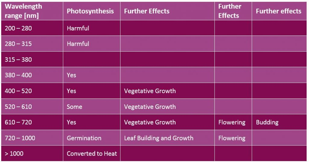 Wavelenghts and their effects on plants and photosynthesis